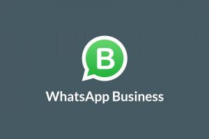 Llegó WhatsApp Business